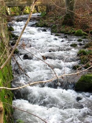 Rzeka Słupia w Sulęczynie - wyzwanie dla kajakarzy