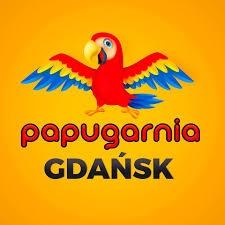 Papugarnia Gdañsk - atrakcje przez ca³y tydzieñ