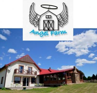 Angel Farm - piekne miejsce na grzyby